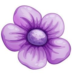 A violet flower vector image
