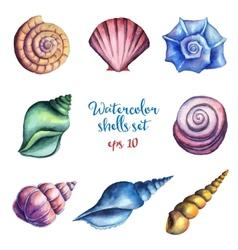Watercolor shells set vector image vector image