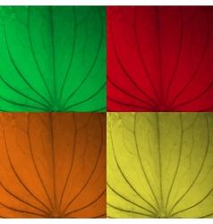 Leaf texture four color set vector