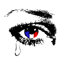 Crying eye with flag of france vector
