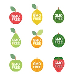 GMO Free tag logo label emblem for plant fruits vector image