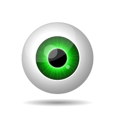 Green Eye on White Background vector image vector image