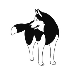 Siberian Husky silhouette on a white background vector image vector image