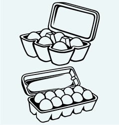 Eggs in a carton package vector