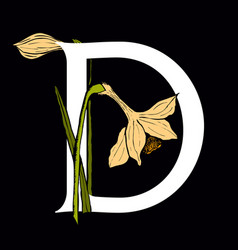 letter d with daffodil flower vector image