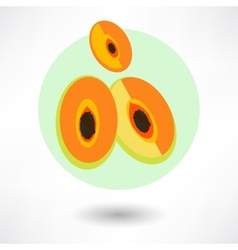 Cartoon papaya vector