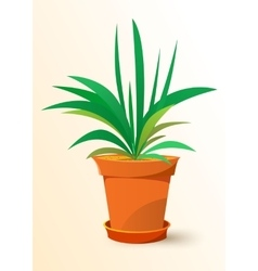 Green chlorophytum plant in a pot vector