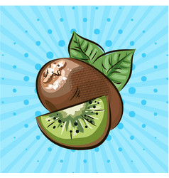 ripe kiwi on a blue background lines pointshand vector image