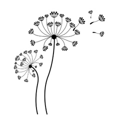 silhouette dandelion with stem and pistil and fly vector image vector image