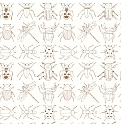 Seamless pattern with doodle sketch bugs and vector