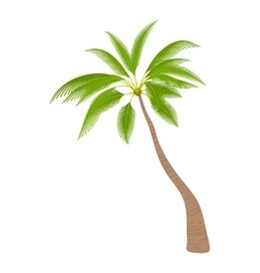 Sloped palm tree icon cartoon style vector