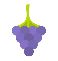 Black grape icon isolated vector