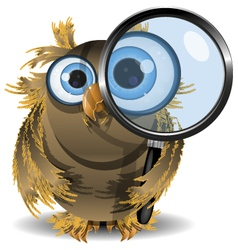 curious owl vector image vector image