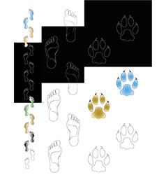 foot v vector image