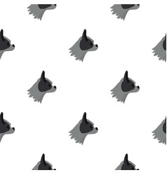Pug dog pattern seamless vector