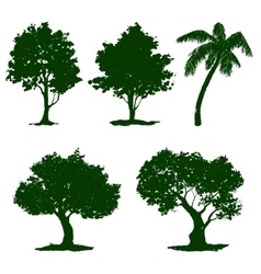 Set tree hand drawn painted vector