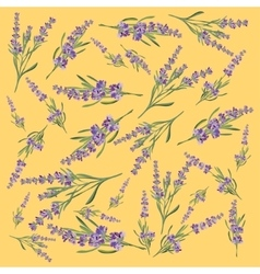 Background with flower frame lavender for vector