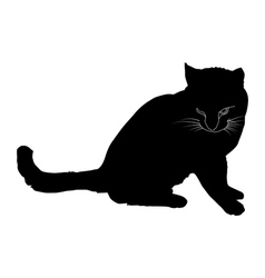 Black silhouette of a cat vector image vector image