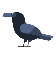 Carrion crow raven vector