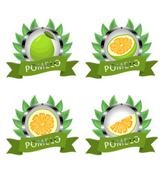 For ripe fruit green pomelo vector