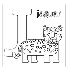 Jaguar letter J coloring page vector image vector image