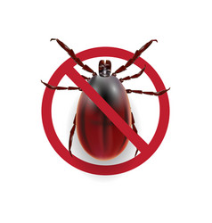 Warning sign harvest bug on a white background vector