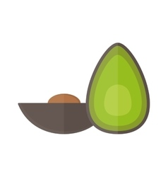 Avocado pieces set isolated on white background vector