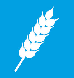 Dried wheat ear icon white vector