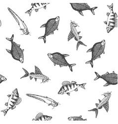 fish pattern sketch of carp hand drawn vector image