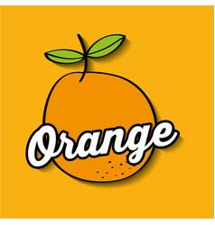 Orange fresh fruit premium quality vector