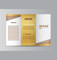 tri-fold brochure template vector image vector image