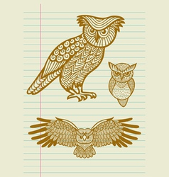 Vintage Decorative Owl Sketches vector image vector image