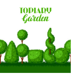 Boxwood topiary garden plants seamless border vector
