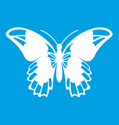 Admiral butterfly icon white vector