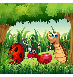 Insects at the forest vector