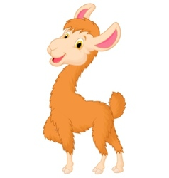 Happy llama cartoon vector