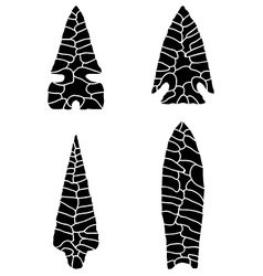 Arrowhead vector