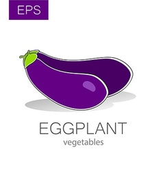 Eggplant vegetables vector