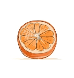 Sketch of orange for your design vector image vector image
