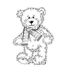 drawing teddy bear with scarf vector image