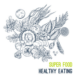superfood poster hand drawn sketch vector image vector image