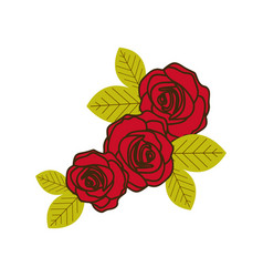 colorful silhouette with set of roses close up vector image