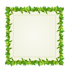 frame from green leaves vector image