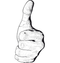 Hand show like vector