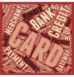 How Credit Cards Work text background wordcloud vector image
