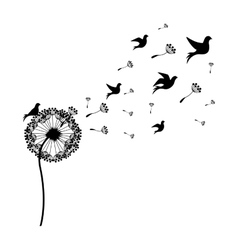 silhouette dandelion with fly birds vector image