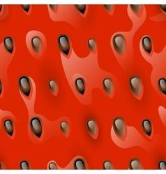 Watermelon pulp seamless vector image vector image
