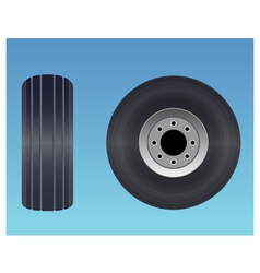 Aircraft tire vector