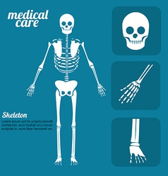 body healthy desing llustration vector image