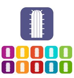 Cereus candicans cactus icons set flat vector